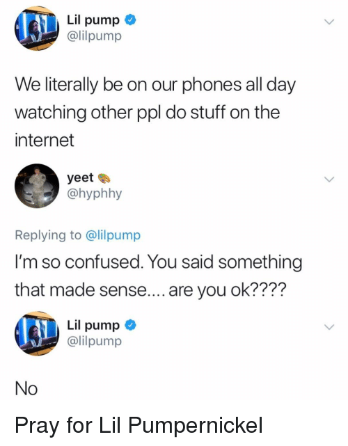 Confused, Internet, and Memes: Lil pump  lilpump  We literally be on our phones all day  watching other ppl do stuff on the  internet  yeet  @hyphhy  Replying to @lilpump  l'm so confused. You said something  that made sense.... are you ok????  Lil pump <  @lilpump  No Pray for Lil Pumpernickel