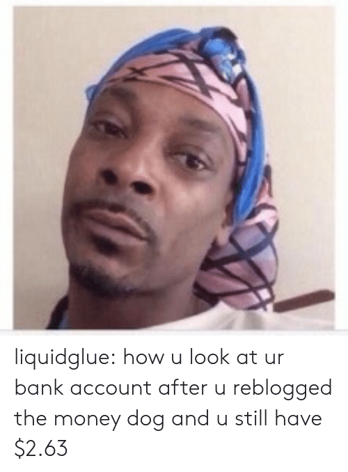 Money Dog: liquidglue: how u look at ur bank account after u reblogged the money dog and u still have $2.63