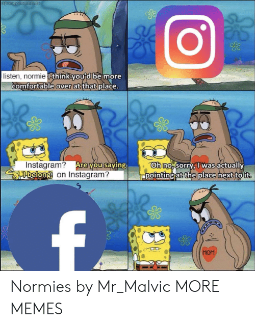 Belonging: listen, normie  thinkou d be more  comfortable  over at  thatplace.  Instagram? Are  belong on Instagram?  oh no sorryTwas actually  ppointing at the place next to ut  ou saving  MOM Normies by Mr_Malvic MORE MEMES
