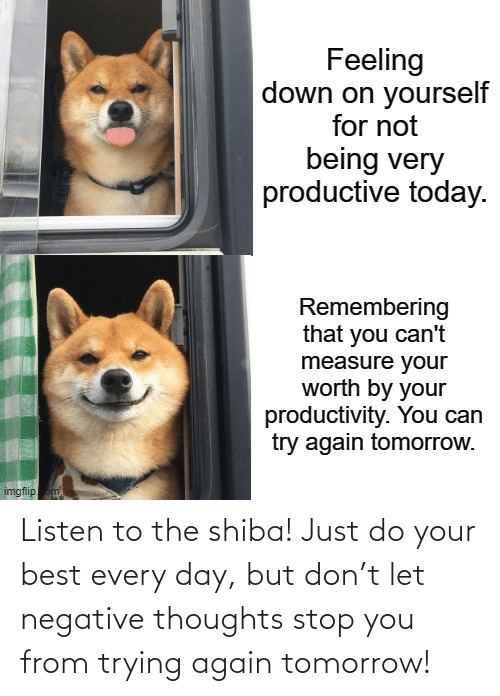 every day: Listen to the shiba! Just do your best every day, but don't let negative thoughts stop you from trying again tomorrow!