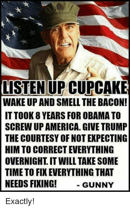 America, Obama, and Smell: LISTEN UP CUPCAKE  WAKE UP AND SMELL THE BACON!  IT TOOK YEARS FOR OBAMA TO  SCREW UP AMERICA. GIVE TRUMP  THE COURTESY OF NOT EXPECTING  HIM TO CORRECT EVERYTHING  OVERNIGHT IT WILL TAKE SOME  TIMETO FIX EVERYTHING THAT  NEEDS FIXING!  GUNNY Exactly!
