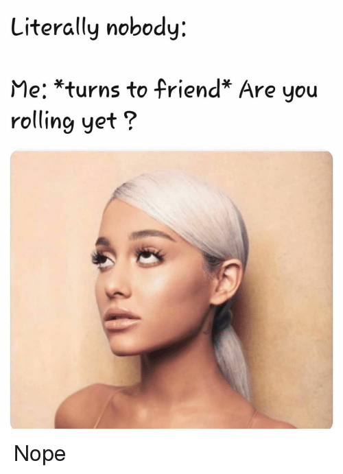 Memes, Nope, and 🤖: Literally nobody:  Me: *turns to friend* Are you  rolling yet? Nope