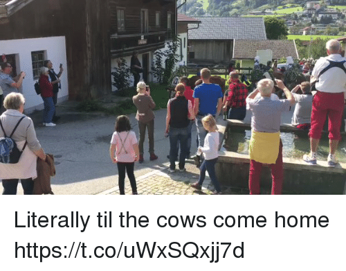 Memes, Home, and 🤖: Literally til the cows come home https://t.co/uWxSQxjj7d