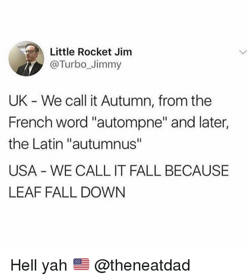 """Fall, Funny, and Yah: Little Rocket Jim  @Turbo_Jimmy  UK - We call it Autumn, from the  French word """"autompne"""" and later,  the Latin """"autumnus""""  USA - WE CALL IT FALL BECAUSE  LEAF FALL DOWN Hell yah 🇺🇸 @theneatdad"""