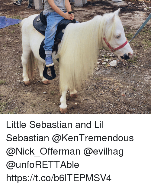 Memes, Nick Offerman, and Nick: Little Sebastian and Lil Sebastian @KenTremendous @Nick_Offerman @evilhag @unfoRETTAble https://t.co/b6lTEPMSV4
