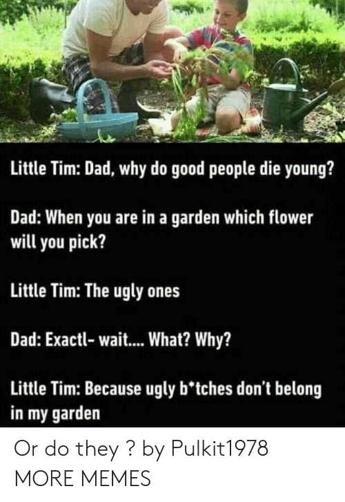Dad, Dank, and Memes: Little Tim: Dad, why do good people die young?  Dad: When you are in a garden which flower  will you pick?  Little Tim: The ugly ones  Dad: Exactl- wait... What? Why?  Little Tim: Because ugly b'tches don't belong  in my garden Or do they ? by Pulkit1978 MORE MEMES