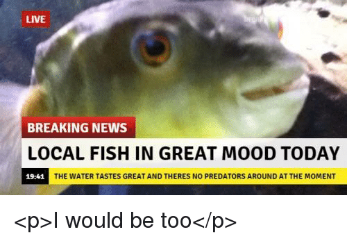 Mood, News, and Breaking News: LIVE  BREAKING NEWS  LOCAL FISH IN GREAT MOOD TODAY  19:41  THE WATER TASTES GREAT AND THERES NO PREDATORS AROUND AT THE MOMENT <p>I would be too</p>