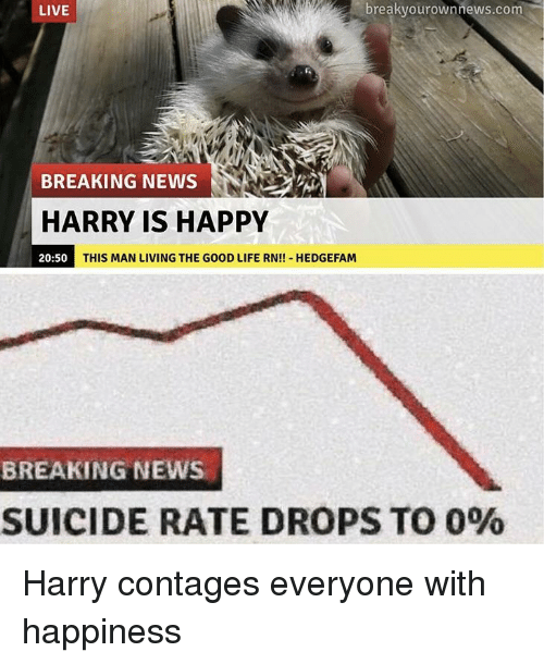 Life, News, and Breaking News: LIVE  breakvourownnews.com  BREAKING NEWS  HARRY IS HAPPY  20:50  THIS MAN LIVING THE GOOD LIFE RN!! HEDGEFAM  BREAKING NEWS  SUICIDE RATE DROPS TO 0% Harry contages everyone with happiness