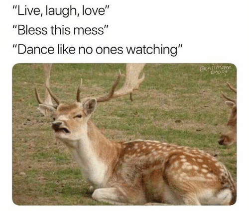 """Love, Live, and Humans of Tumblr: """"Live, laugh, love""""  """"Bless this mess""""  """"Dance like no ones watching'"""""""