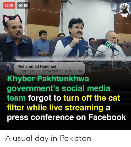 Pakistan: LIVE O 80  aneen  Mohammad Hammad  Filter hata lo. Bnda billi bana hua hai  Khyber Pakhtunkhwa  government's social media  team forgot to turn off the cat  filter while live streaming a  press conference on Facebook A usual day in Pakistan
