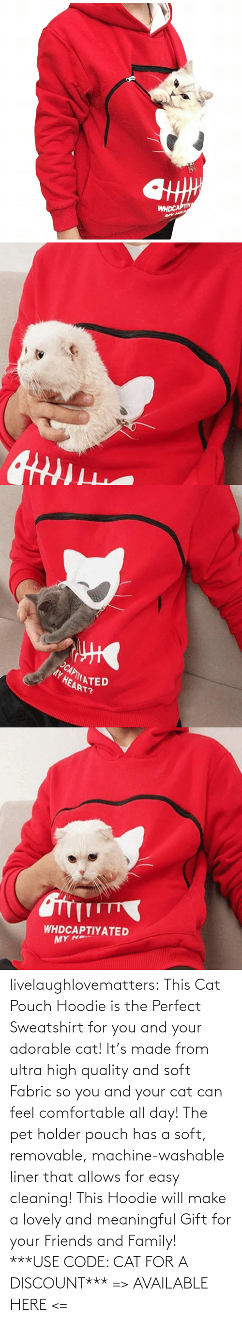 comfortable: livelaughlovematters: This Cat Pouch Hoodie is the Perfect Sweatshirt for you and your adorable cat! It's made from ultra high quality and soft Fabric so you and your cat can feel comfortable all day! The pet holder pouch has a soft, removable, machine-washable liner that allows for easy cleaning! This Hoodie will make a lovely and meaningful Gift for your Friends and Family!  ***USE CODE: CAT FOR A DISCOUNT*** => AVAILABLE HERE <=