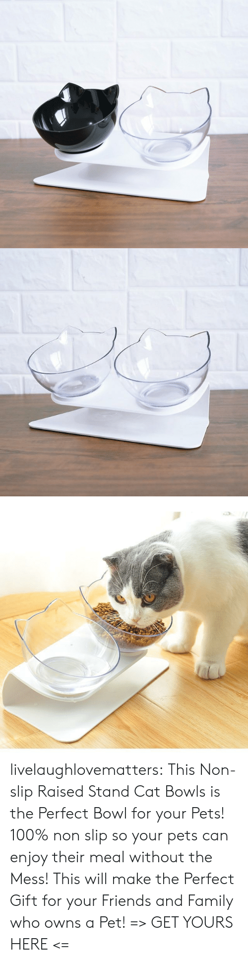 Pets: livelaughlovematters: ThisNon-slip Raised Stand Cat Bowls is the Perfect Bowl for your Pets! 100% non slip so your pets can enjoy their meal without the Mess! This will make the Perfect Gift for your Friends and Family who owns a Pet! => GET YOURS HERE <=