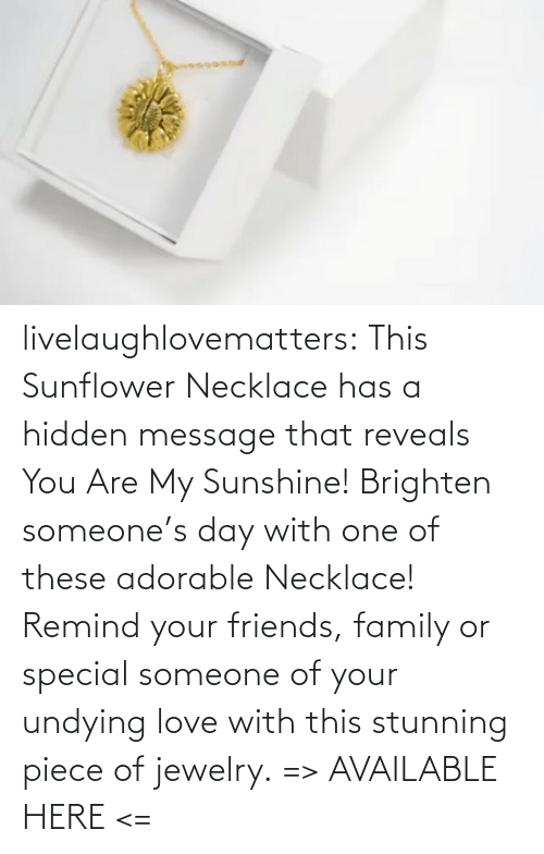 Hidden Message: livelaughlovematters:  This Sunflower Necklace has a hidden message that reveals You Are My Sunshine! Brighten someone's day with one of these adorable Necklace! Remind your friends, family or special someone of your undying love with this stunning piece of jewelry. => AVAILABLE HERE <=