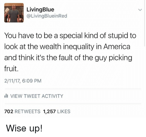 Memes, 🤖, and Fruits: Living Blue  @Living BlueinRed  You have to be a special kind of stupid to  look at the wealth inequality in America  and think it's the fault of the guy picking  fruit.  2/11/17, 6:09 PM  ill VIEW TWEET ACTIVITY  702 RETWEETS 1,257  LIKES Wise up!