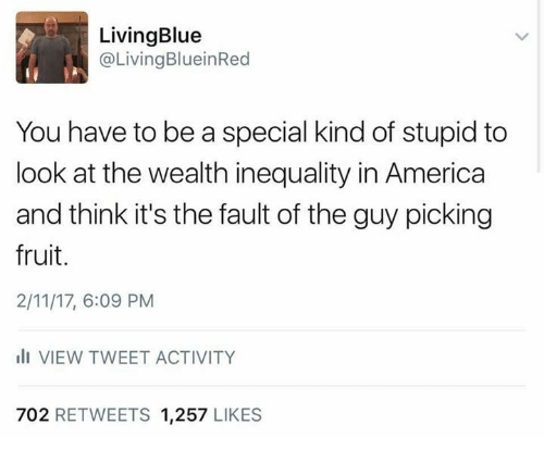 Memes, 🤖, and Fruits: Living Blue  @Living BlueinRed  You have to be a special kind of stupid to  look at the wealth inequality in America  and think it's the fault of the guy picking  fruit.  2/11/17, 6:09 PM  III VIEW TWEET ACTIVITY  702 RETWEETS  1,257  LIKES