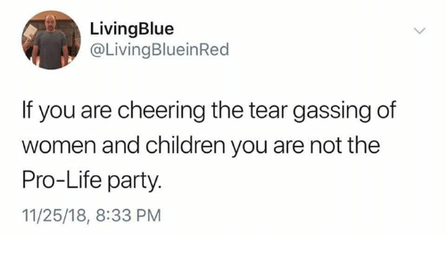 Children, Life, and Memes: LivingBlue  @LivingBlueinRed  If you are cheering the tear gassing of  women and children you are not the  Pro-Life party.  11/25/18, 8:33 PM