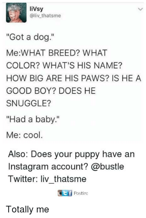 """Instagram, Memes, and Twitter: livsy  @liv thatsme  """"Got a dog.""""  Me:WHAT BREED? WHAT  COLOR? WHAT'S HIS NAME?  HOW BIG ARE HIS PAWS? IS HE A  GOOD BOY? DOES HE  SNUGGLE?  """"Had a baby.""""  Me: cool  Also: Does your puppy have an  Instagram account? @bustle  Twitter: liv_thatsmee  Postizc Totally me"""