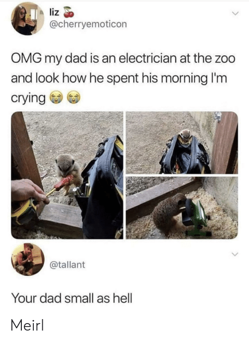 liz: liz  @cherryemoticon  OMG my dad is an electrician at the zoo  and look how he spent his morning I'm  crying  @tallant  Your dad small as hell Meirl