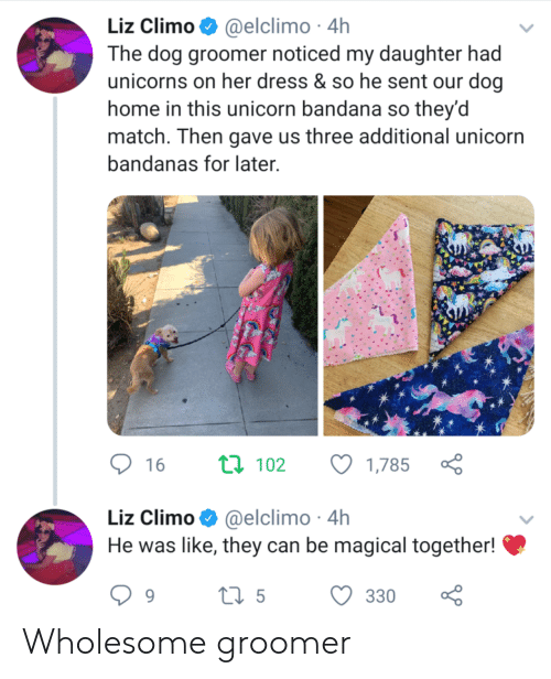 Dress, Home, and Match: Liz Climo @elclimo 4h  The dog groomer noticed my daughter had  unicorns on her dress & so he sent our dog  home in this unicorn bandana so they'd  match. Then gave us three additional unicorn  bandanas for later  ti 102  16  1,785  Liz Climo@elclimo 4h  He was like, they can be magical together!  ti5  330  9 Wholesome groomer