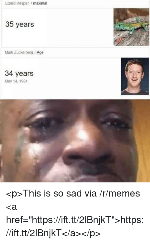 "Mark Zuckerberg, Memes, and Sad: Lizard lifespan maximal  35 years  Mark Zuckerberg Age  34 years  May 14, 1984 <p>This is so sad via /r/memes <a href=""https://ift.tt/2lBnjkT"">https://ift.tt/2lBnjkT</a></p>"