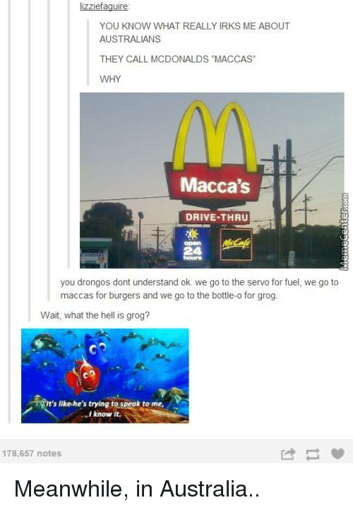 """memes: lizziefaguire:  YOU KNOW WHAT REALLY IRKS ME ABOUT  AUSTRALIANS  THEY CALL MCDONALDS """"MACCAS  WHY  Macca's  DRIVE-THRU  you drongos dont understand ok we go to the servo for fuel, we go to  maccas for burgers and we go to the bottle-o for grog  Wait, what the hell is grog?  it's like he's trying to speak to me,  V  know it.  178,657 notes Meanwhile, in Australia.."""