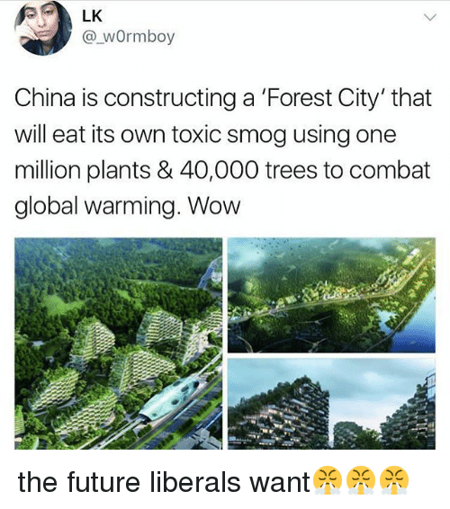 smog: LK  @_wOrmboy  China is constructing a 'Forest City' that  will eat its own toxic smog using one  million plants & 40,000 trees to combat  global warming. Wow the future liberals want😤😤😤