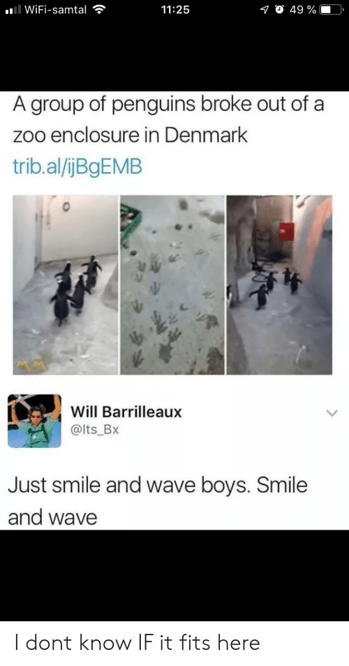 Denmark, Penguins, and Smile: ll WiFi-samtal  O 49 %  11:25  A group of penguins broke out of a  zoo enclosure in Denmark  trib.al/ijBgEMB  Will Barrilleaux  @lts_Bx  Just smile and wave boys. Smile  and wave I dont know IF it fits here