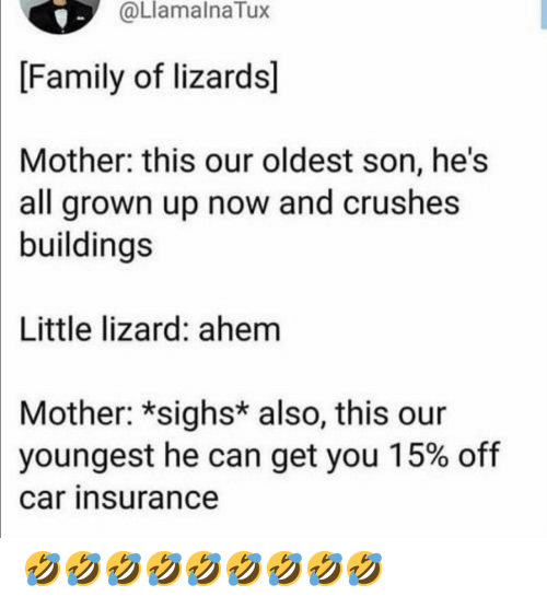Youngest: @LlamalnaTux  [Family of lizards]  Mother: this our oldest son, he's  all grown up now and crushes  buildings  Little lizard: ahem  Mother: *sighs* also, this our  youngest he can get you 15% off  car insurance 🤣🤣🤣🤣🤣🤣🤣🤣🤣