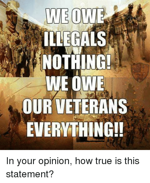Memes, True, and 🤖: LLEGALS  NOTHING!  WE OWE  OUR VETERANS  EVERYTHING!! In your opinion, how true is this statement?