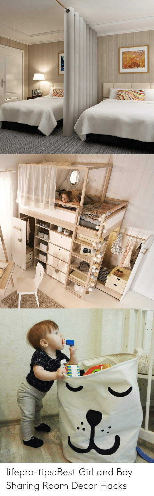 Tumblr, Best, and Blog: LLLL lifepro-tips:Best Girl and Boy Sharing Room Decor Hacks
