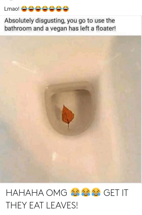 Lmao, Omg, and Vegan: Lmao!  Absolutely disgusting, you go to use the  bathroom and a vegan has left a floater! HAHAHA OMG 😂😂😂 GET IT THEY EAT LEAVES!