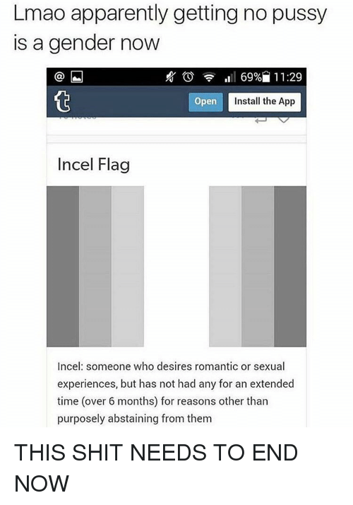 Apparently, Memes, and 🤖: Lmao apparently getting no pussy  is a gender now  69% 11:29  Open  Install the App  Incel Flag  Incel someone who desires romantic or sexual  experiences, but has not had any for an extended  time (over 6 months) for reasons other than  purposely abstaining from them THIS SHIT NEEDS TO END NOW