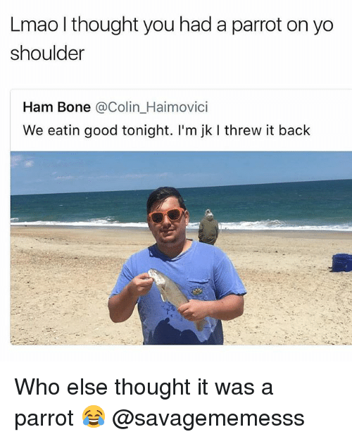 Bones, Lmao, and Memes: Lmao l thought you had a parrot on yo  shoulder  Ham Bone @Colin_Haimovici  We eatin good tonight. I'm jk I threw it back Who else thought it was a parrot 😂 @savagememesss