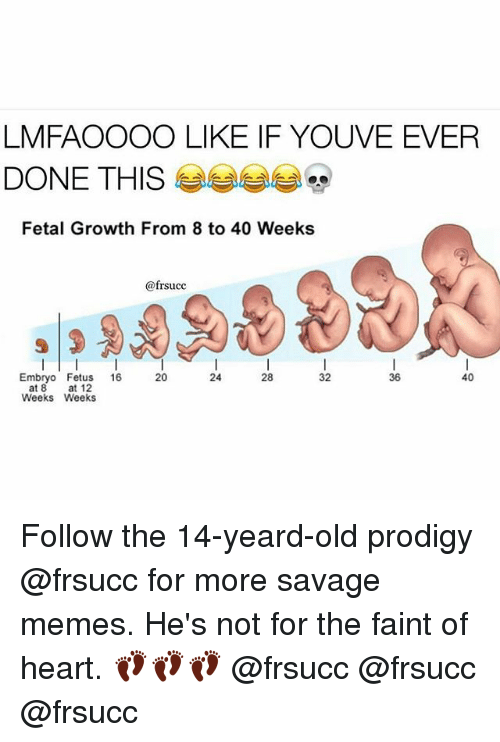 Memes, Savage, and Heart: LMFAOOOO LIKE IF YOUVE EVER  DONE THIS  Fetal Growth From 8 to 40 Weeks  @frsucc  Embryo Fetus  16  20  28  32  40  36  at 8  at 12  Weeks Weeks Follow the 14-yeard-old prodigy @frsucc for more savage memes. He's not for the faint of heart. 👣👣👣 @frsucc @frsucc @frsucc
