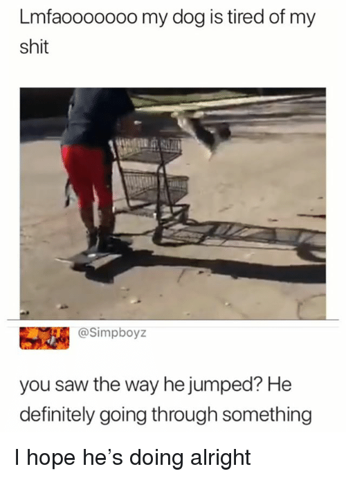 Definitely, Saw, and Shit: Lmfaoooooo0 my dog is tired of my  shit  @Simpboyz  you saw the way he jumped? He  definitely going through something I hope he's doing alright