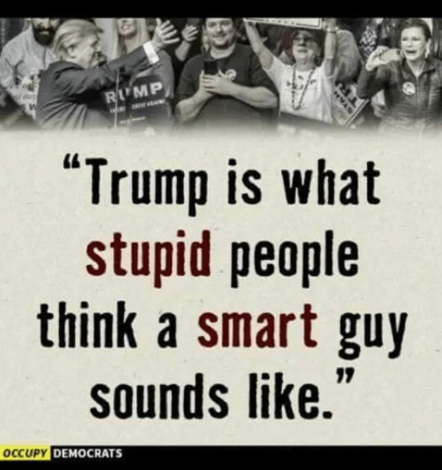 """Memes, Trump, and 🤖: LMP  """"Trump is what  stupid people  think a smart guy  sounds like.  CUPY DEMOCRATS"""
