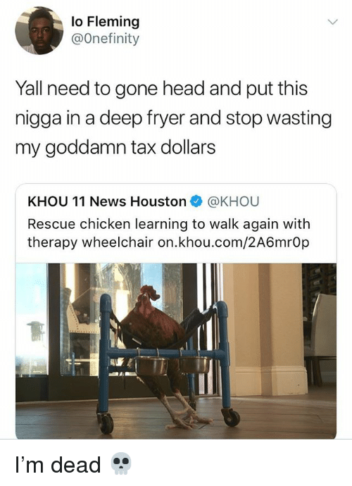 Head, News, and Chicken: lo Fleming  @Onefinity  Yall need to gone head and put this  nigga in a deep fryer and stop wasting  my goddamn tax dollars  KHOU 11 News Houston e》 @KHOU  Rescue chicken learning to walk again with  therapy wheelchair on.khou.com/2A6mrOp I'm dead 💀