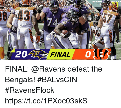 Defeation: LOK  87743  FINAL  0 FINAL: @Ravens defeat the Bengals! #BALvsCIN #RavensFlock https://t.co/1PXoc03skS