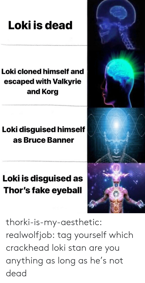 valkyrie: Loki is dead  Loki cloned himself and  escaped with Valkyrie  and Korg  Loki disguised himself  as Bruce Banner  Loki is disguised as  Thor's fake eyeball thorki-is-my-aesthetic:  realwolfjob:  tag yourself which crackhead loki stan are you  anything as long as he's not dead
