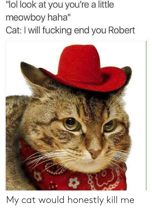 "Fucking, Lol, and Reddit: ""lol look at you you're a little  meowboy haha""  Cat: I will fucking end you Robert My cat would honestly kill me"