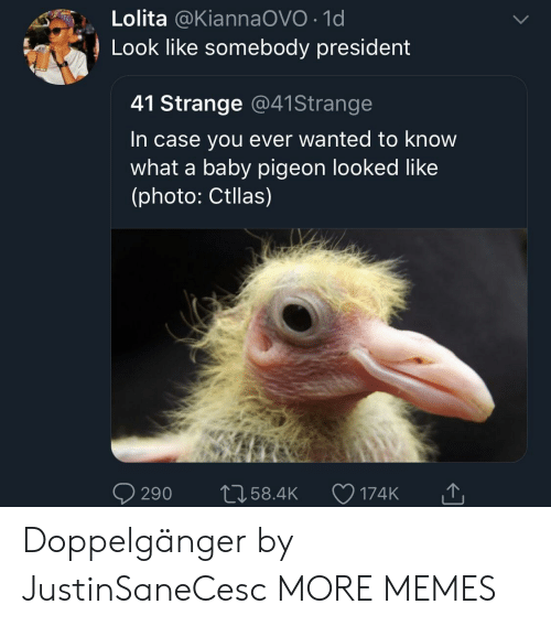 doppelganger: Lolita @KiannaOVO 1d  Look like somebody president  41 Strange @41Strange  In case you ever wanted to know  what a baby pigeon looked like  (photo: Ctllas)  290 t058.4 174K Doppelgänger by JustinSaneCesc MORE MEMES