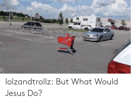 Jesus, Tumblr, and Blog: lolzandtrollz:  But What Would Jesus Do?