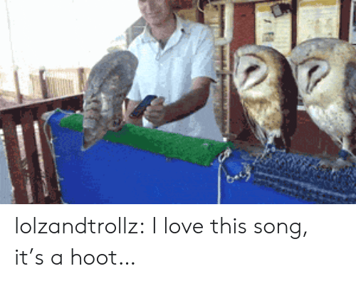 this song: lolzandtrollz:  I love this song, it's a hoot…