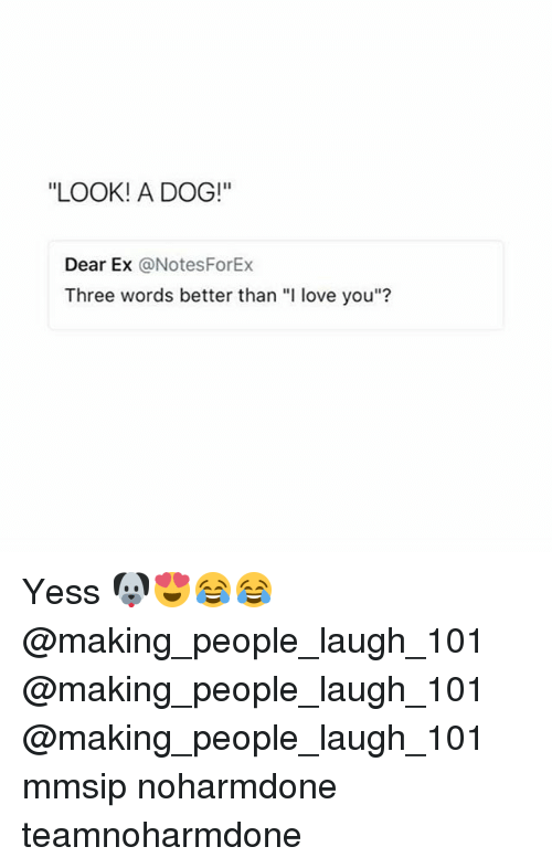 """Love, Memes, and I Love You: """"LOOK! A DOG!""""  Dear Ex @NotesForEx  Three words better than """"I love you""""? Yess 🐶😍😂😂 @making_people_laugh_101 @making_people_laugh_101 @making_people_laugh_101 mmsip noharmdone teamnoharmdone"""