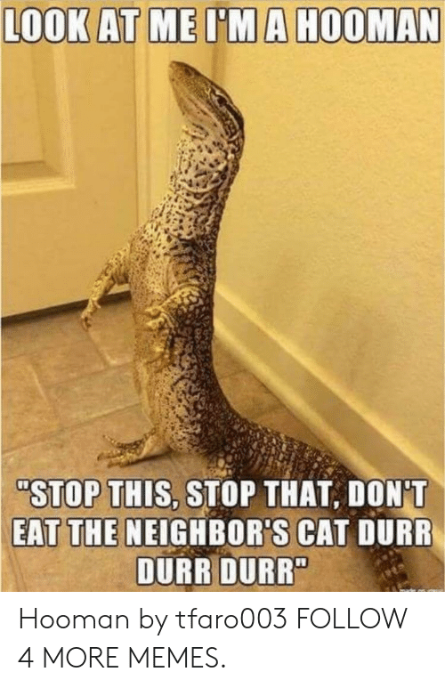 "durr: LOOK AT ME I'MA HOOMAN  ""STOP THIS, STOP THAT, DON'T  EAT THE NEIGHBOR'S CAT DURR  DURR DURR"" Hooman by tfaro003 FOLLOW 4 MORE MEMES."
