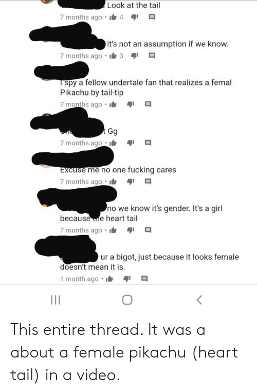 Fucking, Gg, and Pikachu: Look at the tail  7 months ago  4  it's not an assumption if we know.  7 months ago  3  spy a fellow undertale fan that realizes a femal  Pikachu by tail-tip  7 months ago  Gg  7 months ago:  Excuse me no one fucking cares  7 months ago  no we know it's gender. It's a girl  because e heart tail  7 months ago  ur a bigot, just because it looks female  doesn't mean it is.  1 month ago  111 This entire thread. It was a about a female pikachu (heart tail) in a video.