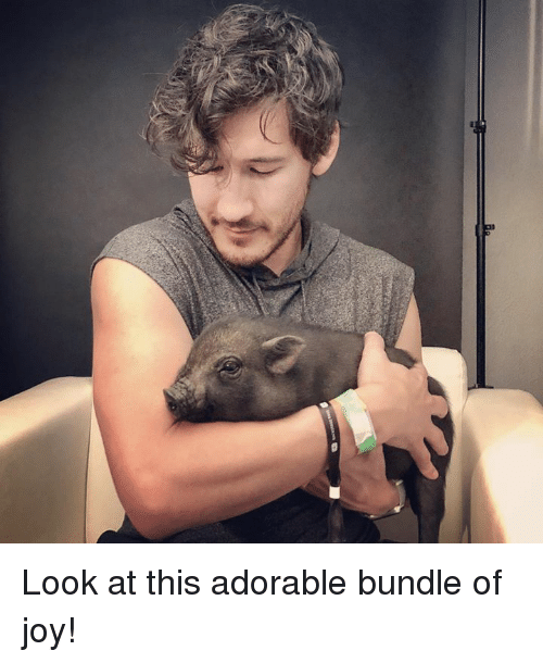 Dank, Adorable, and 🤖: Look at this adorable bundle of joy!