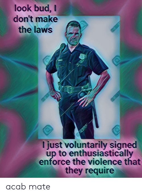 Laws: look bud,  don't make  the laws  125  123RE  I just voluntarily signed  up to enthusiastically  enforce the violence that  they require acab mate