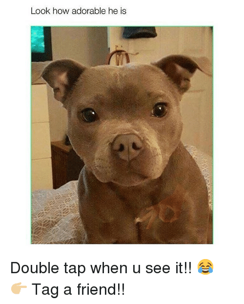 Memes, Adorable, and 🤖: Look how adorable he is Double tap when u see it!! 😂 👉🏼 Tag a friend!!