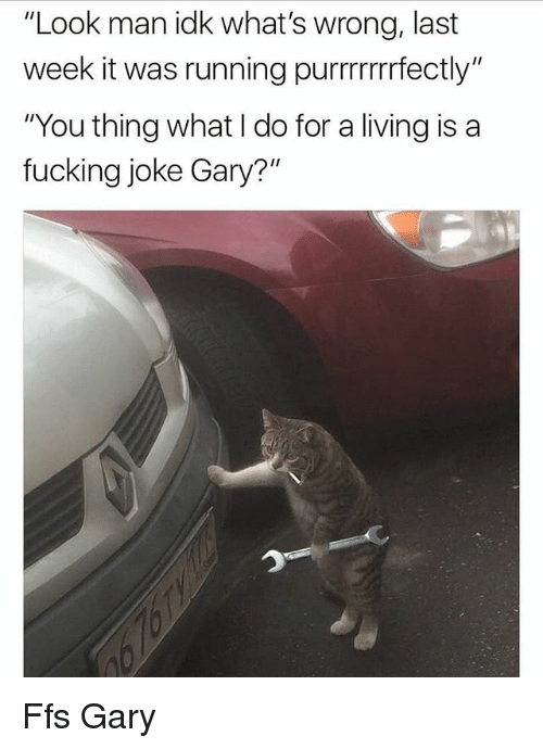 """Fucking, Memes, and Living: """"Look man idk what's wrong, last  week it was running purrrrrfectly""""  """"You thing what I do for a living is a  fucking joke Gary?"""" Ffs Gary"""